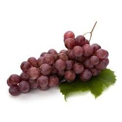 Vinič KALINA