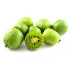 Kiwi maloplodé samoopelivé ISSAI